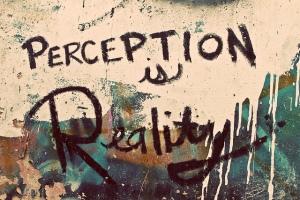 semantics impact perception in learning programs